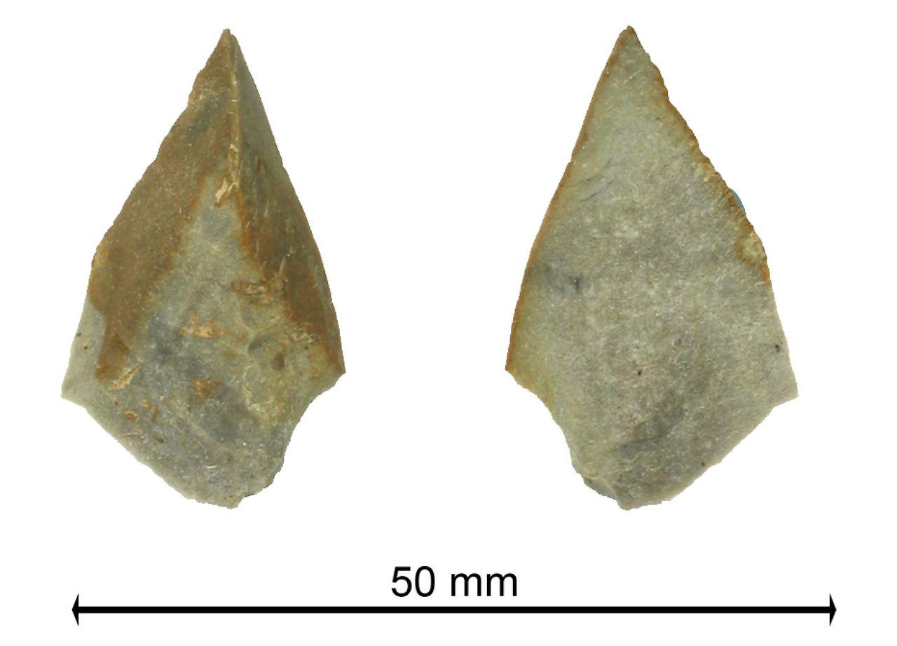 Steinzeit Bonn fundsache nr 839 leim aus der steinzeit n tv de