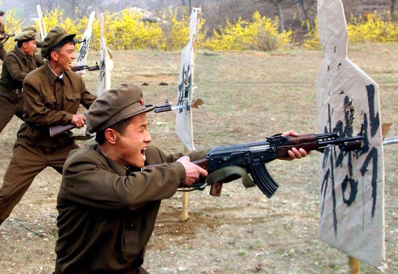 ... das sind aggressive Soldaten, ...